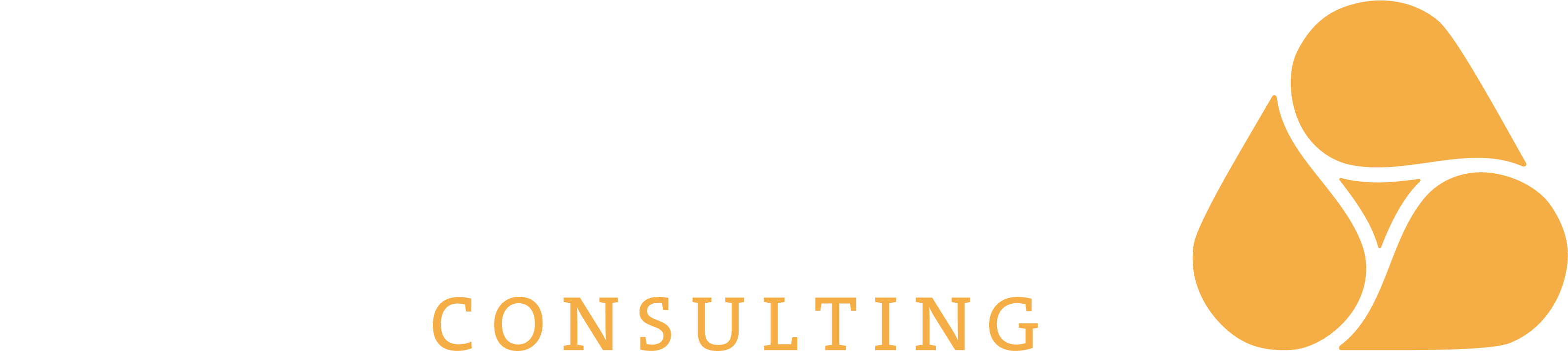ALMADERA Consulting